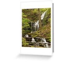 Scalebar Force Greeting Card