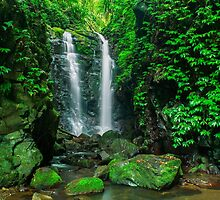 Beautiful Waterfall  by Rob D