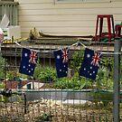 patriotic porch by oliversutton