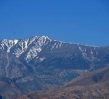 Telescope Peak by Loisb