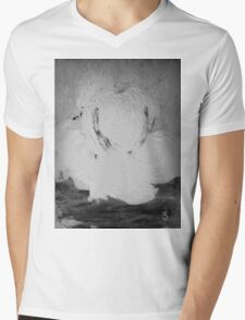 Abstract in Nature Shadows Mens V-Neck T-Shirt