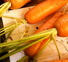 Home grown carrots from a small Organic vegetable patch  by PhotoStock-Isra