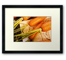 Home grown carrots from a small Organic vegetable patch  Framed Print