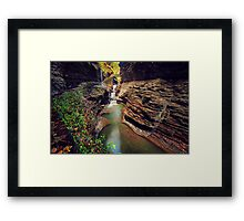 Watkins Glen Gorge Framed Print