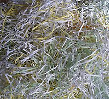 Shredded Paper by foxhill