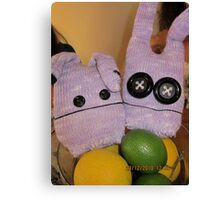 chiling out in the fruit basket Canvas Print