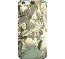 Mason Jar In Spring iPhone Case/Skin