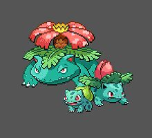 Bulbasaur Evolutions by Flaaffy