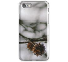 Crisp twigs iPhone Case/Skin