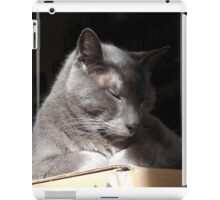 Contentment on a Box iPad Case/Skin