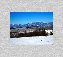 snow on point lookout Womens Fitted T-Shirt