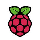 raspberry pi  by timothy hance