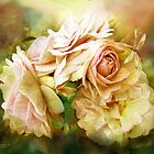Miracle Of A Rose - Yellow by Carol  Cavalaris