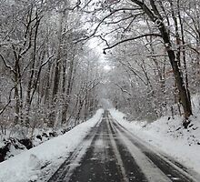 Snow East Tennessee by SouthernQuil