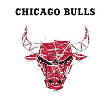 crack logo chicago Photographic Print