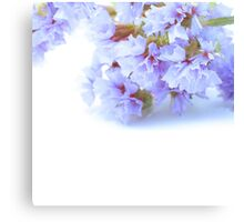 White In Blue Canvas Print
