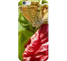 Butterfly on Flower iPhone Case/Skin