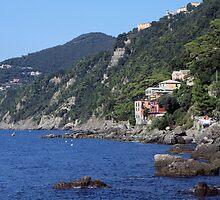 Cinque Terre, Italia by Amber Elen-Forbat