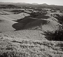 Rolling Hills, Topaz by Tim Burgess