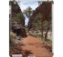 Alice Springs-Simpson Gap iPad Case/Skin