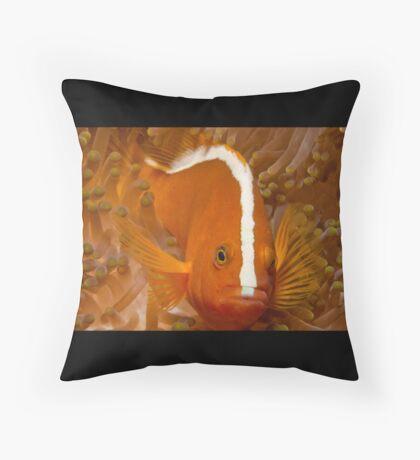 Orange Anemonefish, North Sulawesi, Indonesia Throw Pillow