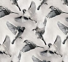 Sparrow Flight - monochrome by micklyn