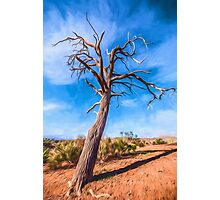 Outback Tree       GO Photographic Print