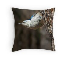 Typical Nuthatch Pose Throw Pillow
