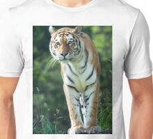 The Stance Of A Tiger Unisex T-Shirt