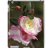 Camellias in May iPad Case/Skin