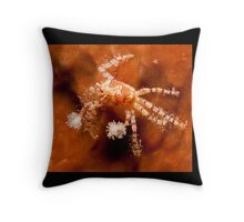 Boxer Crab, North Sulawesi, Indonesia Throw Pillow