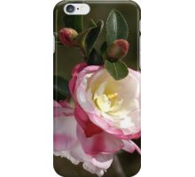 Camellias in May iPhone Case/Skin