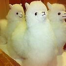 *Three Toy Alpacas* by EdsMum