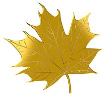 Golden maple leaf by igorsin