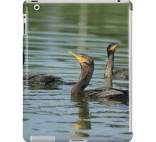 Neotropical Cormorants Swimming iPad Case/Skin