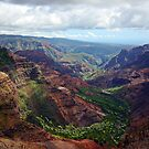 Waimea Canyon by Melinda  Ison - Poor