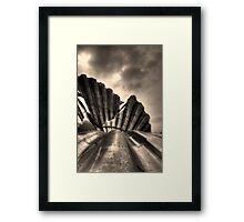 Scallop Sculpture Framed Print