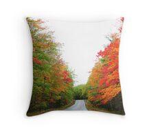 Baxter state park , Maine Throw Pillow