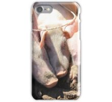 Pigs at the Market iPhone Case/Skin