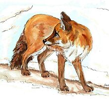 Red Fox by Carole Chapla