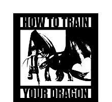 How to train your dragon toothless Photographic Print