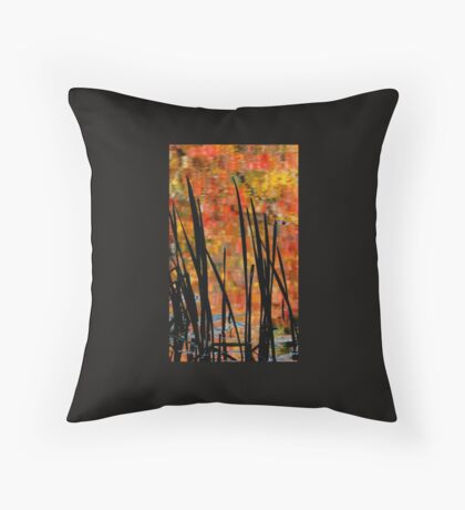 Reflections on Infinity Throw Pillow