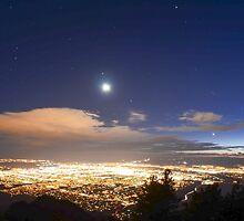 Moonlit night by stretchermonkey