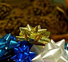 Putting up Christmas 9 by Carolyn Clark