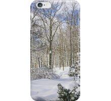 Snowy Winter Wonderland iPhone Case/Skin
