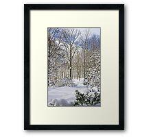 Snowy Winter Wonderland Framed Print
