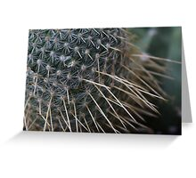 Cactus Needles Greeting Card