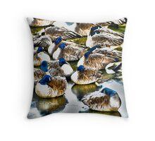 Sleeping Geese Throw Pillow