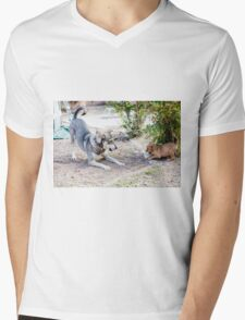 A mature dog and a puppy play in the yard  T-Shirt