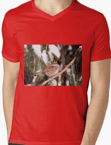 Here's Looking At You Mens V-Neck T-Shirt